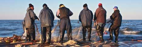 آب دریاها سخت تلخ است