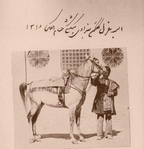 اسب غزل گلگون بغدادي، پيشكشي حسامالملك؛ 1318 قمري (1279 شمسي)  از مجموعهي آلبومهاي ظلالسلطان در موسسهي مطالعات تاريخ معاصر ايران